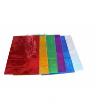 SAC PAPIER BRILLANT GM 42X60X20CM (x12)