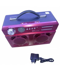 RADIOFM CLE USB MOBILE MS44  C9